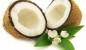 Olejek kokosowy - właściwości i zastosowanie oleju z kokosa