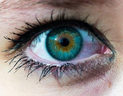 soczewki kontaktowe roczne